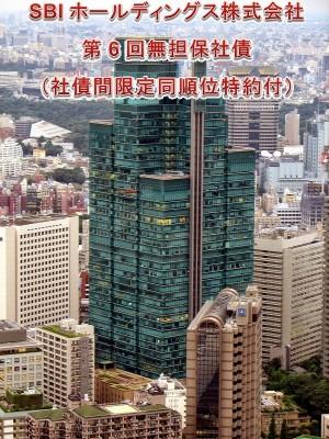 SBIホールディングス株式会社 第6回無担保社債(社債間限定同順位特約付)